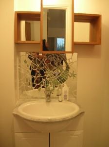 Lezard dans une salle de bains