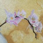 Détail : orchidée