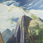 Détail montagne