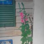 Détail roses trémières
